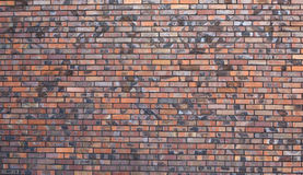 Brick wall surface Royalty Free Stock Image