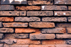 Brick wall texture background. Aged brick wall texture background good for fashion backgrounds Stock Photos