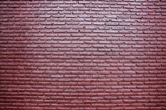 Brick wall texture, background Stock Images