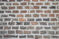 Brick wall texture. Color Brick wall - texture or background Royalty Free Stock Photos