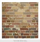 Brick wall texture grange style Stock Photos