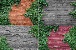 Brick wall texture Stock Photography