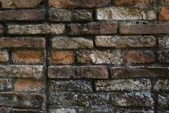 Brick wall, texture, pattern Stock Images