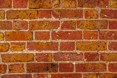 Brick wall texture Royalty Free Stock Photos