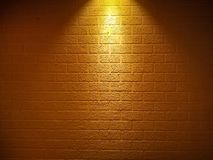Brick wall textured with the focus light on the top vector illustration