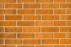 Brick wall for use as background Royalty Free Stock Image