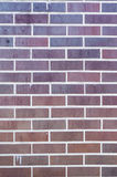 Brick wall for use as background Royalty Free Stock Photos