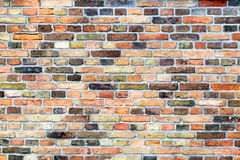 Brick wall with various colors Stock Images