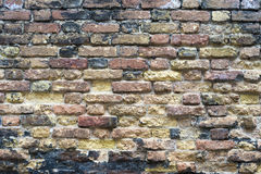 Brick wall in Venice Stock Images