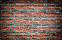 Brick wall with vignette Royalty Free Stock Images
