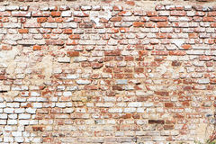 Brick wall with vintage look Stock Images