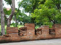 Brick wall beside the walkway and big tree in ancient remains stock images