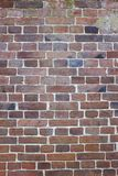 Vertical image of Old Fernch Brick wall, wallpaper pattern, background texture Stock Photography