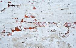 Brick wall with white whitewashing close up Stock Image