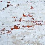 Brick wall with white whitewashing close up Royalty Free Stock Photo