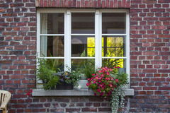 Brick wall with windows and flower boxes with flowering plants Royalty Free Stock Photography