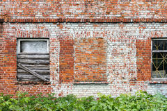 Brick wall and windows. Old red brick wall with some windows and green grass, architecture background Royalty Free Stock Images