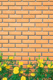 Brick wall with yellow flower in the garden Stock Photo