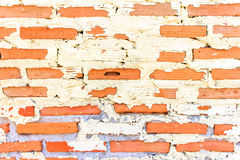 Brick walls Stock Photography
