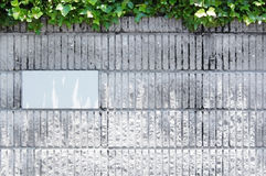 Brick walls and plants. Photo shoot outdoors during the day Royalty Free Stock Photo