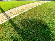 Brick way sidewalk and shadow of tree Royalty Free Stock Image