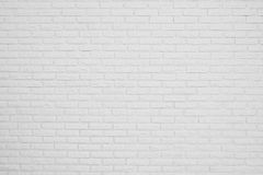 Brick white blank wall Royalty Free Stock Images