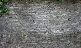 brick5 groutless Στοκ φωτογραφία με δικαίωμα ελεύθερης χρήσης