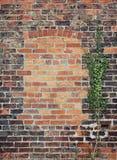 Bricked acima do indicador Imagens de Stock
