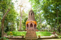 Bricked pagoda in forest. Pagoda of buddhism in natural forest in countryside of thailand Royalty Free Stock Images