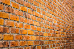 Bricked Wall Background Stock Image