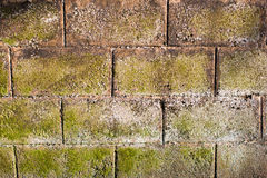 Bricked wall Stock Images