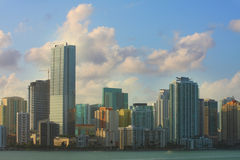 Brickell Miami Royalty Free Stock Images