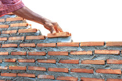 Bricklayer  building wall isolated on whitebricklayer  building Stock Images