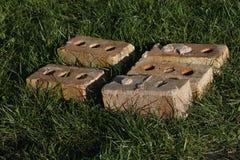 Bricks. Image of 5 old bricks on grass Royalty Free Stock Images