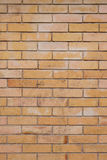 Bricks background Stock Image