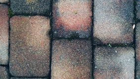 Bricks background Stock Images
