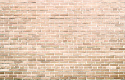 Bricks on cement texture Stock Photography