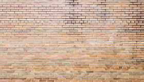 Bricks on cement texture Royalty Free Stock Image