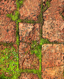 Bricks clay soil pavement traditional Spain Royalty Free Stock Images