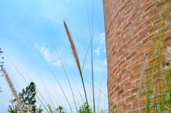 Bricks. Are constructing the wall with blue sky Stock Photos