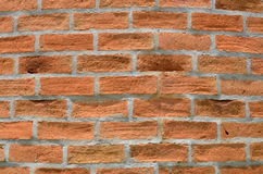 Bricks. Are constructing the wall in the garden Royalty Free Stock Photography