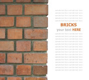 Bricks isolated on white Stock Image