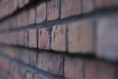 Bricks. A lot of bricks on a wall Stock Images