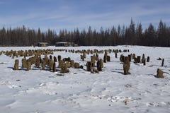 Bricks from manure to dry. Yakut village Honu. Russia stock image