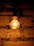 Bricks n' Bulb. A bulb on an old brick wall Royalty Free Stock Photo