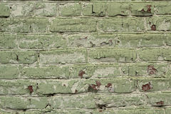 Bricks painted in green color  background Stock Photography