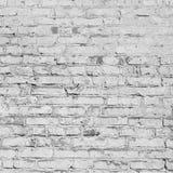 Bricks painted white. Stone wall. Royalty Free Stock Photo