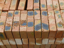 Bricks. Pile of bricks,Construction materials Stock Photography