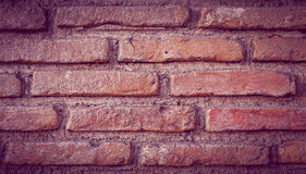 Bricks texture. Textured Bricks dark brown background stock image