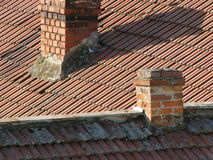 Bricks and tiles Royalty Free Stock Photography